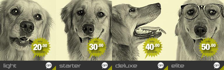 Εικόνα banner Resellers Light πακέτου της Hostdog