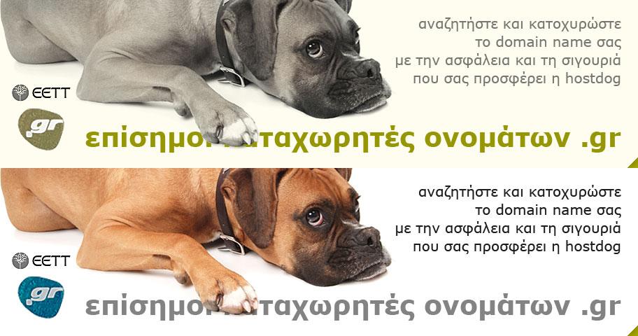 Επίσημοι καταχωρητές ονομάτων .gr