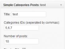 Simple SEO Categories Posts widget Screenshot
